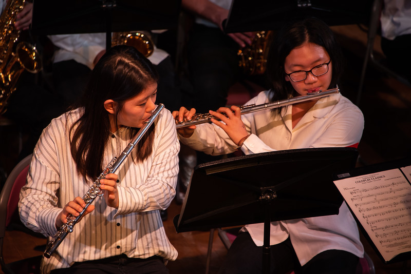 Play Perform Create-Concert-YIS_9057-2018-19.jpg