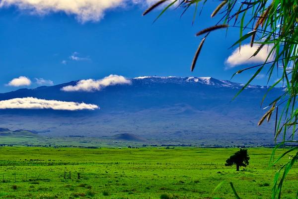Mauna Kea Snow from Waimea Town