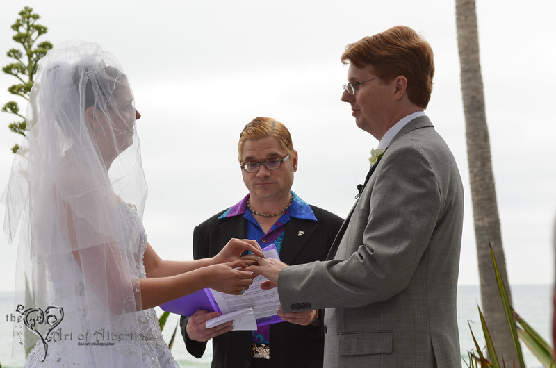 Laura & Sean Wedding-2392.jpg
