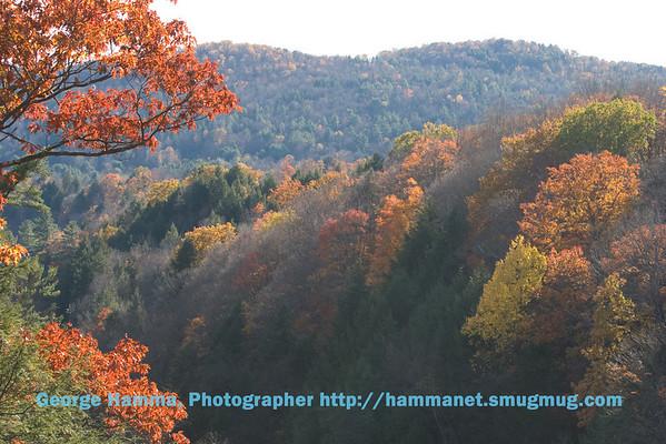 New England Foliage Trip 0810