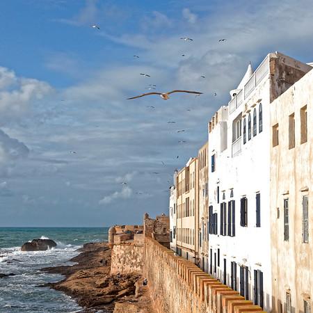 La forteresse d'Essaouira