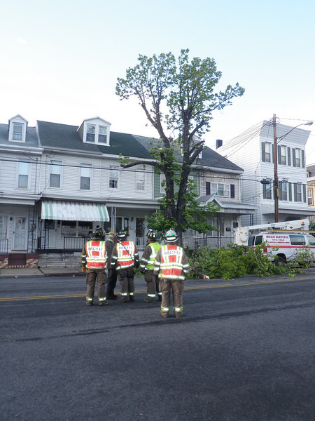 mahanoy city tree incident 5-8-2010 024.JPG