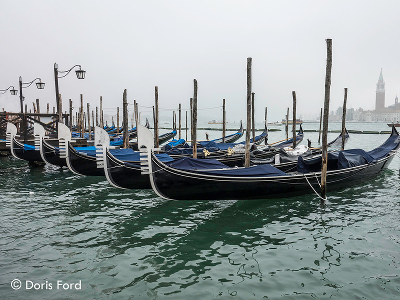 Fog in Venice- Gondolas.jpg