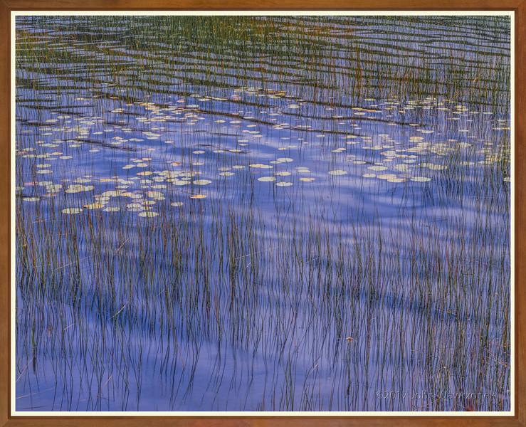 A Mindfull Stillness