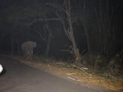 2011.01.05-13 India