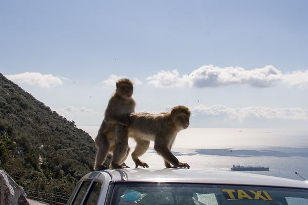 Gibraltar - Roll #2