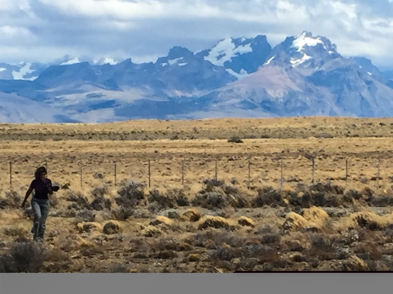 Patagonia18iphone-6322.jpg