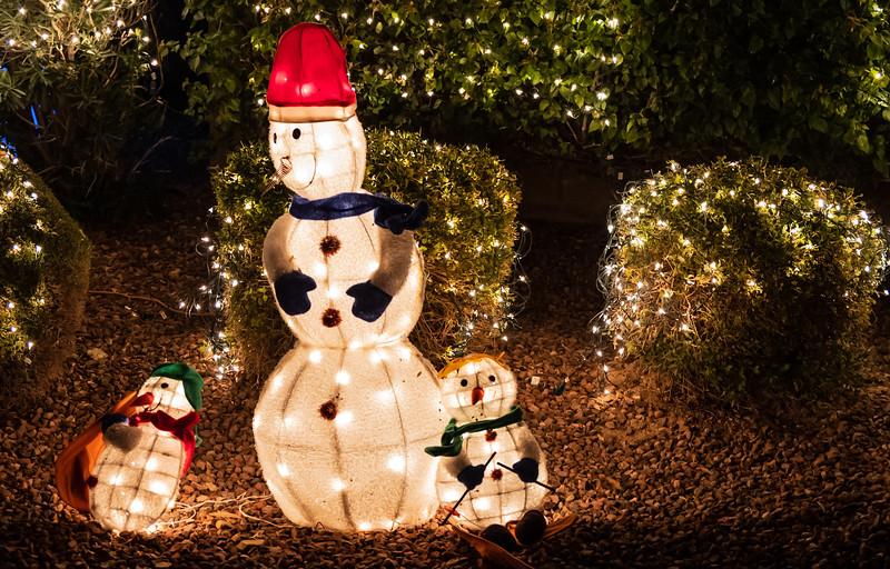 Christmas Lights in the Neighborhood  December 19, 2020  19_.jpg