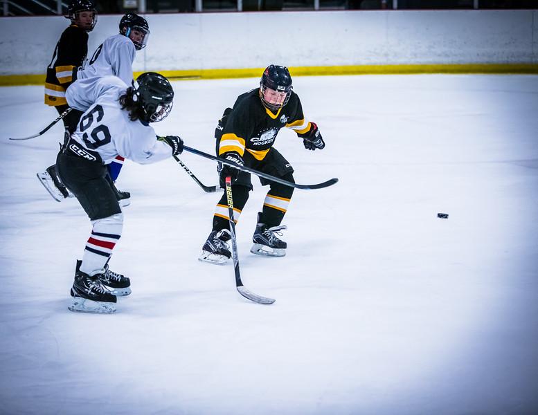 Bruins2-457.jpg
