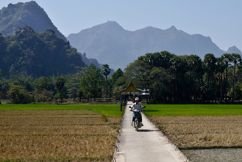 A neat bridge through the rice paddies outside of Hpa-An, Burma, near the Kawkathaung and Ruby Caves