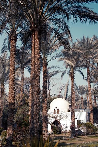 saqqara_unas_tomb_serapeum_dahshur_red_bent_pyramid_20130220_5410.jpg