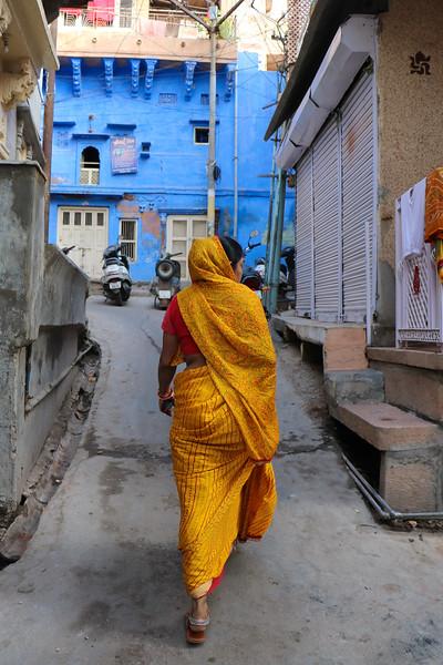 India-Jodhpur-2019-0441.jpg