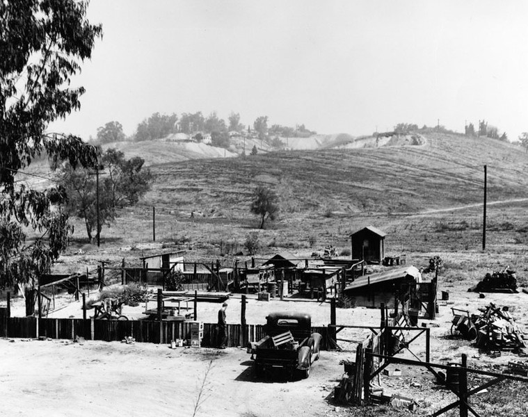 1950, Country-like Setting