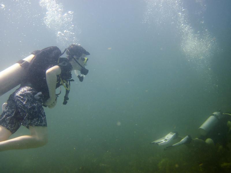islamorada-diving-68.jpg