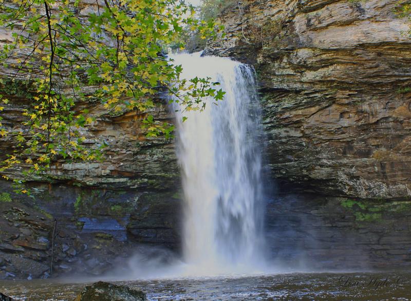 Cedar Falls, Petit Jean Mountain, AR