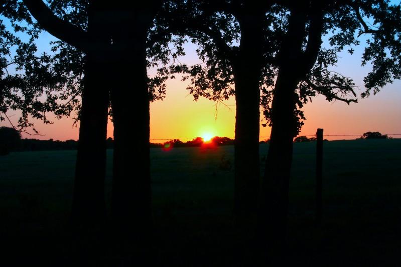 Hope's Sunrise.JPG