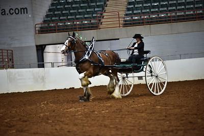 Ladies Clyde Cart