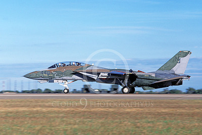 US Navy VF-124 GUNFIGHTERS Military Airplane Pictures