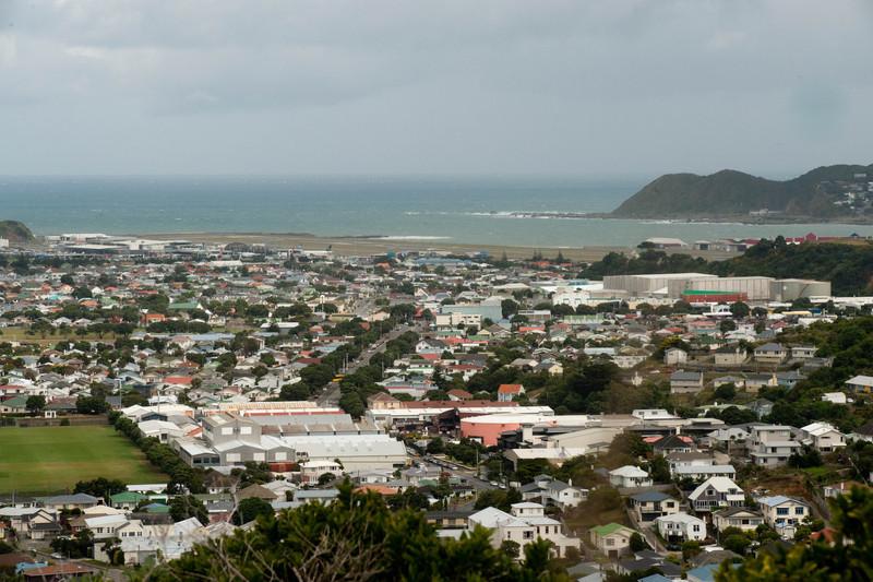 Wellington5761.jpg