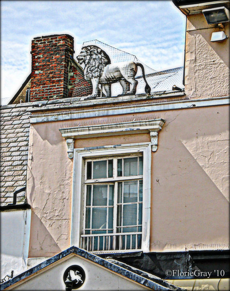 Roof Detail; White Lion Walk, Banbury