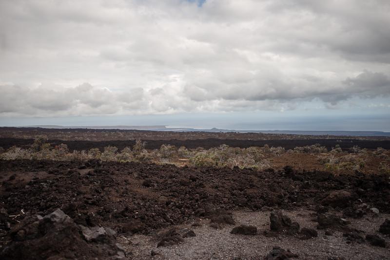 Hawaii2019-385.jpg