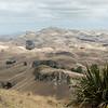 Looking South from Te Mata Peak