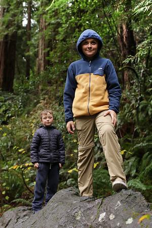 Muir Woods/Tamalpais field trip
