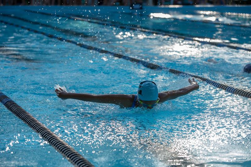 lcs_swimming_kevkramerphoto-060.jpg