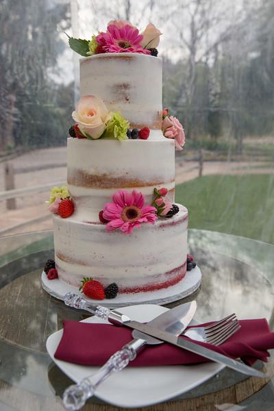 wedding 2.14.19-78.JPG