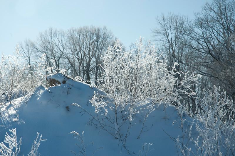 Frosty Mountain
