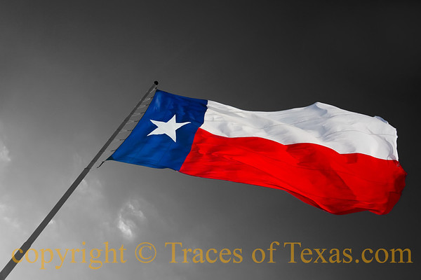 Iconographic Texas: Signs, Logos