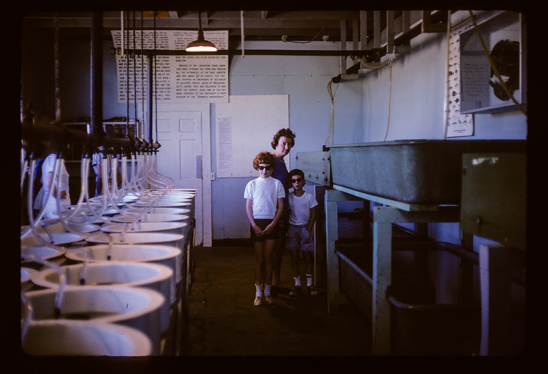 1966 Family_Aug_37.jpg