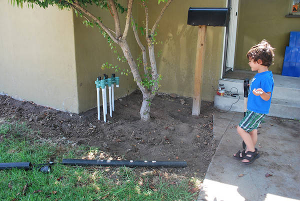 Fixing Front Yard Sprinkler System