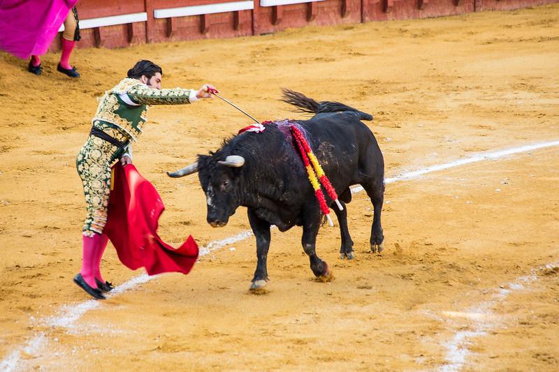 Bullfight8.jpg