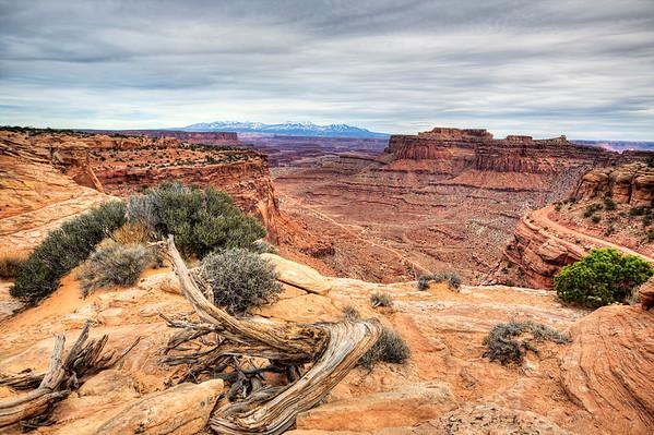 Utah-Canyonlands-Arches-Zion