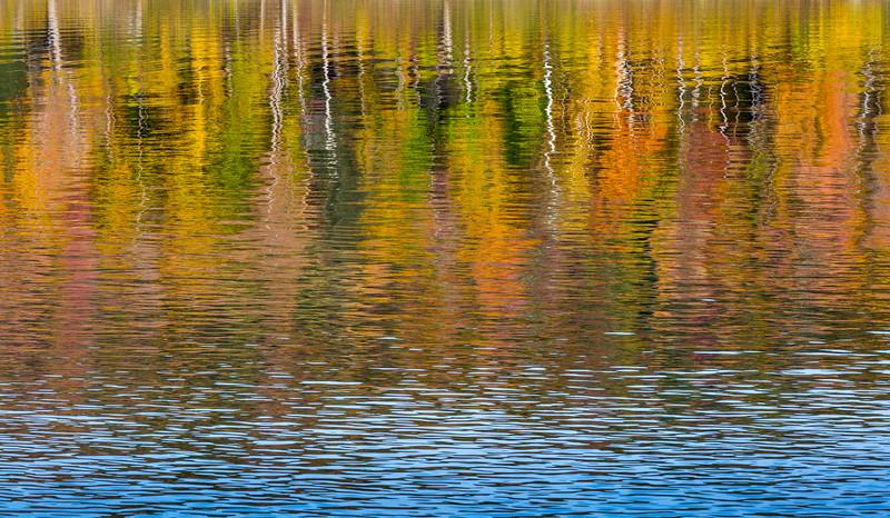 Reflections VT-1580.JPG