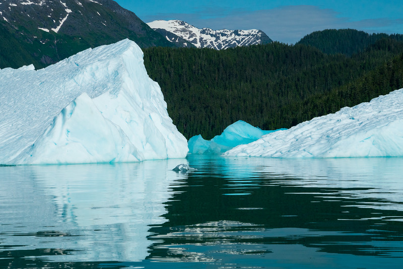 Petersberg Alaska 2019-36.jpg