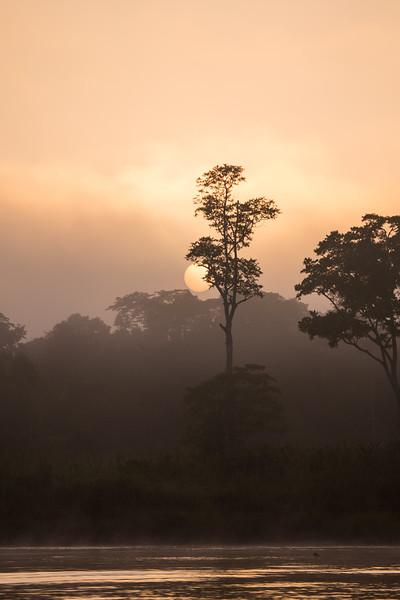 Sunrise On The Kinabatangan II