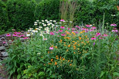 Our 2019 Garden