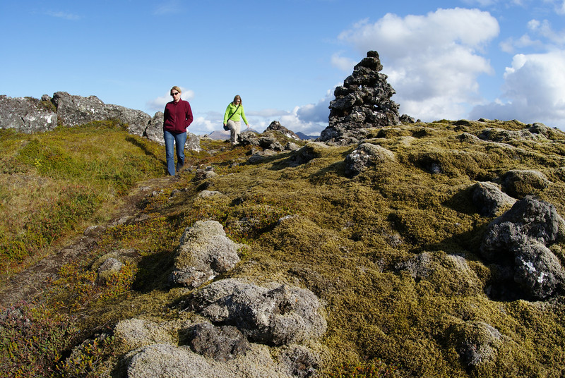 """Look, the Attache is running off to see some rocks.  Actually, this was planned stop.  We are at Berserkjahraun which means """"Berserkers Lava Field"""".  The lava flowed a few thousand years ago and is now covered with thick mosses.  It's a beautiful area for a walk.  The site also has some cool history.  Two genuine 10th century berserkers cut a path through the lava field but were then betrayed and killed after completing the work.  The path still exists.  Both were buried somewhere in the field, but the actual gravesite we could not find."""