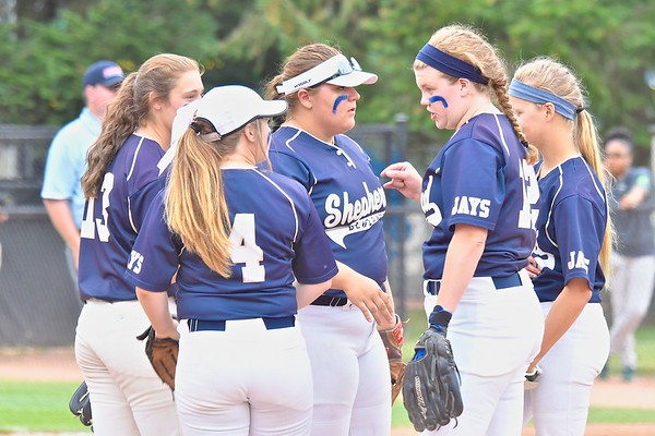 Shepherd Falls in State D3 Semi-final Game