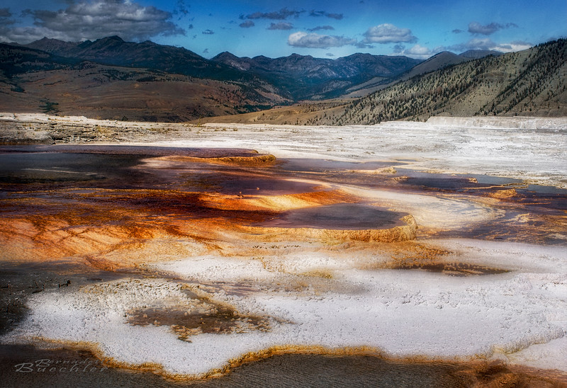 Mammoth Springs_Yellowstone National Park.jpg