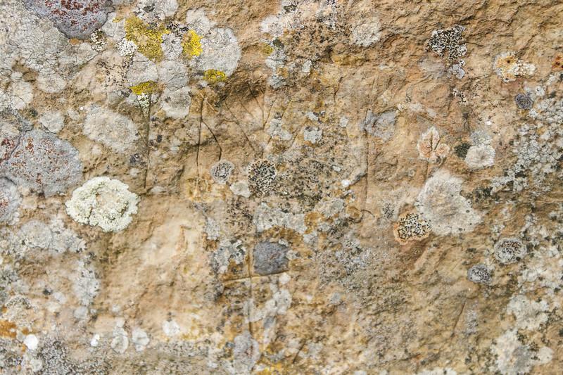 Ring of Brodgar, Orkney - 16.jpg