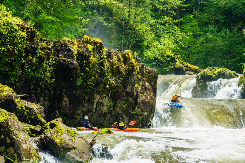 """""""Champagne"""" on Washington's Canyon Creek is a bit juicy at this level, but the boofs are so good."""