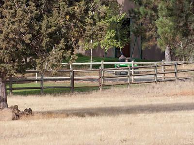 69445 Deer Ridege
