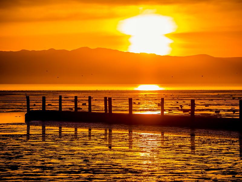 sunset-overdrive-hayward_SCREEN.jpg