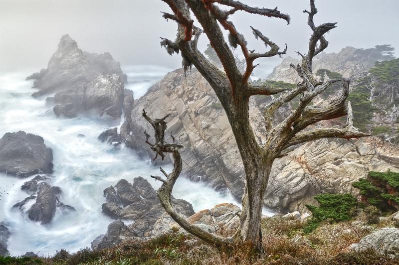 Pinnacle Cove, Point Lobos, California