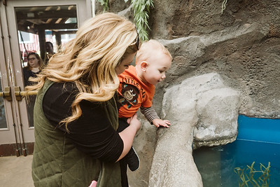 Point Defiance Zoo March 2018