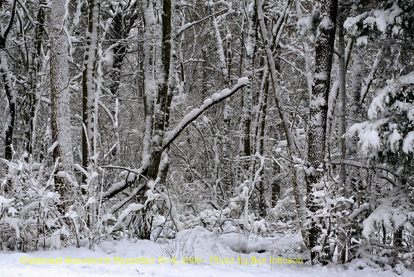 East Coast Snowstorm December 19, 2009