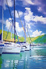 Beautiful tropical harbor lined with sailboat yachts and lush mountains in the background.